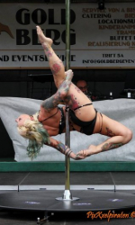 Pole Dance Shows buchen