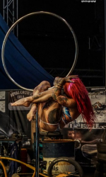 Aerial Hoop show buchen